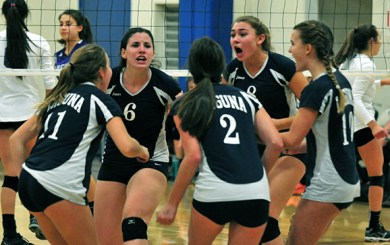 Owls achieve their goal, advance to CIF Final