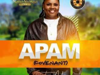 Nana Akosua – Apam mp3 download