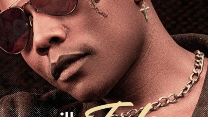 Willz Mr Nyopole – Tulo mp3 download