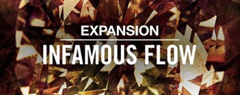 Native Instruments releases INFAMOUS FLOW