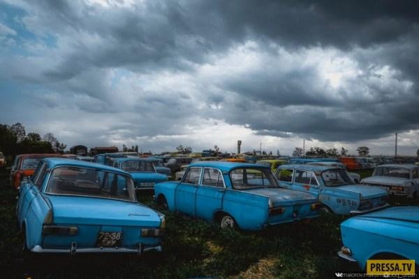 Уникальный автомузей или автопогост советских автомобилей ...