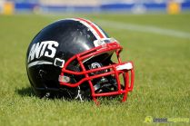helm 20140607_ants_spartans_0037