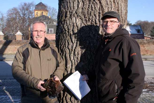 Baumarbeiten Wachendorf Eiche