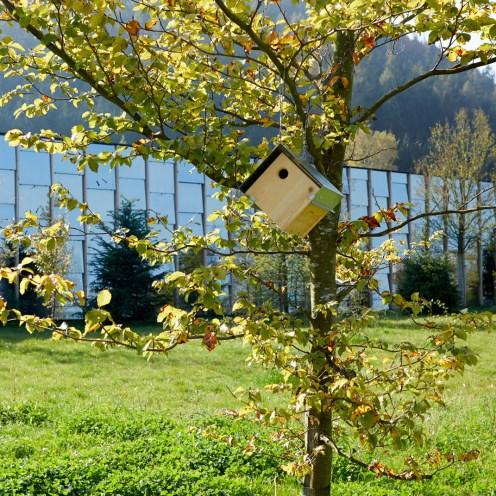 Themenführung Faszination Naturgarten