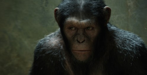 Rise-of-the-Planet-of-The-Apes-©-2011-20th-Century-Fox