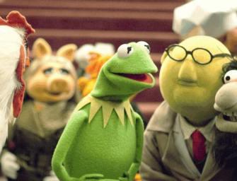Die Muppets Gewinnspiel
