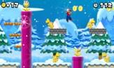 New-Super-Mario-Bros-2-©-2012-Nintendo