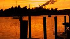 The-Bay-©-2012-Koch-Media,-Lionsgate(1)