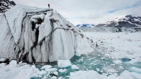 Chasing Ice (Doku). Regie: Jeff Orlowski. 29.11.