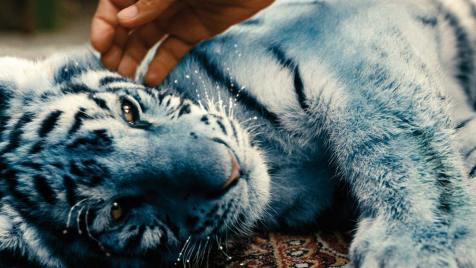 Der blaue Tiger (Kinderfilm, Regie: Bohdan Sláma, Petr Oukropec, 17.01.)