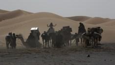 Königin-der-Wüste-(c)-2015-Polyfilm(6)