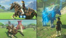The-Legend-of-Zelda-Breath-of-the-Wild-DLC-(c)-2018-Nintendo-(9)