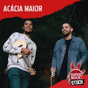 concerto de acácia maior em portugal