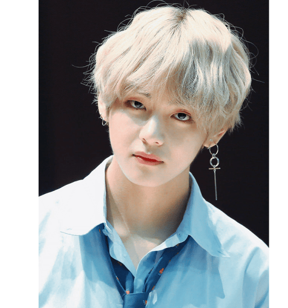BTS V, Secret Soldier to Become a World Star - A Man of Record