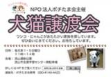 1208579 thum - 犬猫譲渡会