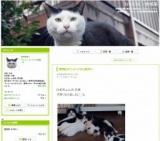 1212959 thum - 練馬区ボランティア連絡会