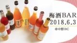 1595033 thum - 梅酒BAR2018