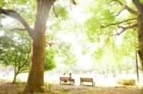 1596866 thum - 6/25 目黒のスタバで朝活やります! (月曜・お茶代のみ) 【東京】