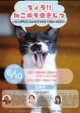 1597549 thum 1 - 「超猫ボラ会議室!」犬猫みなしご救援隊中谷さんも来ます!