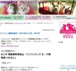 1597856 thum 1 - ミオパン(松村未央)が子供妊娠!お腹のふくらみを画像で確認!つわりはひどい?