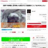 """1598450 thum - 長野で地域猫と室内飼いを普及する""""保護猫カフェ""""をOPENしたい"""