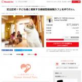 1600144 thum - 足立区初!子ども達と運営する譲渡型保護猫カフェを作りたい。