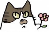 1601575 thum 1 - ねこの手の会【猫の譲渡会開催】8月19日(日)13〜15時【小牧】参加猫!