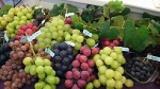 1602089 thum - 「山梨県産葡萄のコース料理とワインと葡萄ジュース」 のイベントのご案内