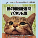 1603198 thum 1 - 動物愛護週間パネル展