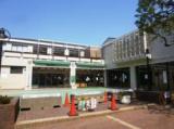 1603749 thum - 桜丘児童館 9月「さくらんぼひろば」 | 世田谷区