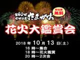 1604923 thum 1 - たまがわ花火大鑑賞会