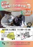 1605184 thum 1 - 保護猫たちの幸せ探し会