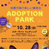 1605455 thum 1 - 保護犬猫の楽しい譲渡会Adoption PARK