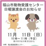 1605900 thum - 福山市動物愛護センター日曜譲渡会