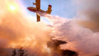 1114 12 1 - 米加州山火事 有名人の家次々被災 ニール・ヤングは2回目の自宅焼失と