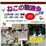 1608123 thum 1 - 猫の譲渡会 IN 戸越