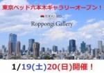 1609328 thum - ★1/19(土)20(日)カリモク家具鶴見アウトレット『理由(ワケ)ありフェア!』