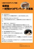 1610001 thum 1 - 保護猫預かりボランティア募集
