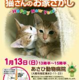 1610356 thum 1 - VIVAキャッツ譲渡会 猫さんのお家さがし