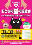 1610920 thum 1 - ★ほぼ♪まいにち譲渡会★ 名古屋市動物愛護センター