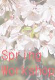 1615965 thum - 春のワークショップ2019 アメリカ劇作家作品で映像演技を深める