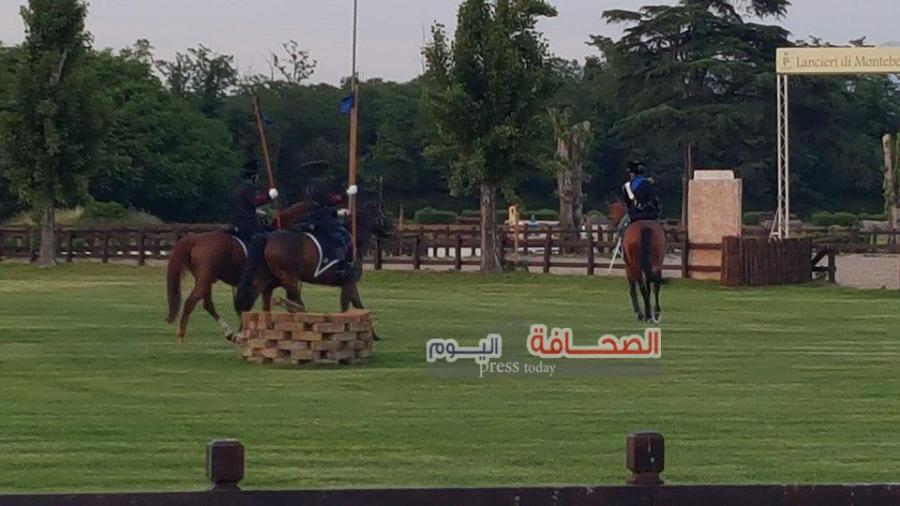 خيول 3