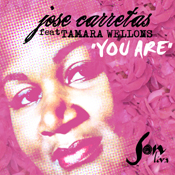 Jose Carretas feat.Tamara Wellons - The Way You Are
