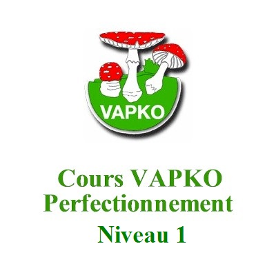 Cours Perfectionnement 1