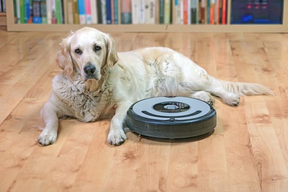 perro con robot aspirador
