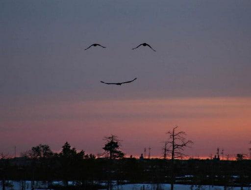 微笑ませてください