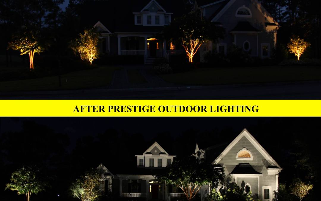 Landscape Lighting: Our Process from Start to Finish