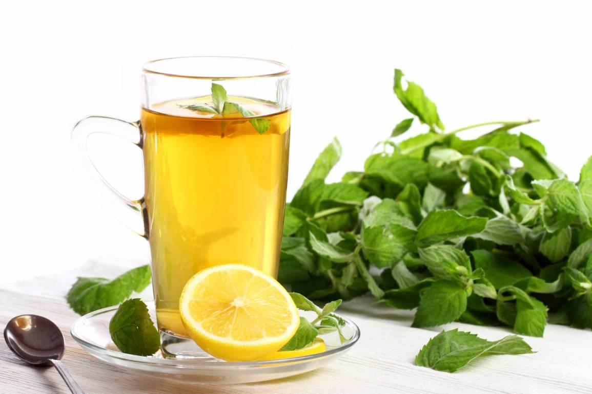 cup hot mint tea Zdrowie i uroda