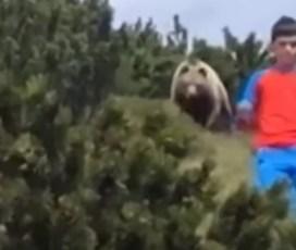 Posnetek, ki ti nažene strah v kosti: 12-letnik iz oči v oči z medvedom!