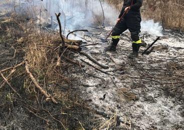 Kuril odpadno vejevje, ogenj ušel izpod nadzora